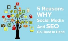 The Role of Social Media in Your Website SEO Host Yuppie Article Directory