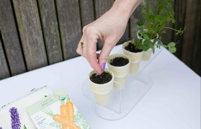 50 easy gardening hacks to make the most out of your garden